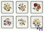 Portmeirion Botanic Roses Square Salad Plate - Set of 6