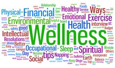 The Wellness Industry - Explosive Growth and World-Class Products: The Perfect Chemistry for Success