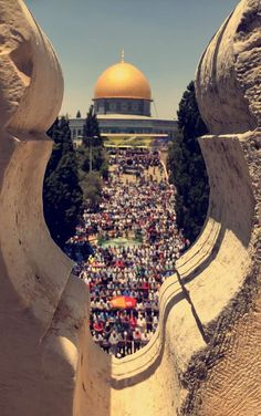 Prayers in front of Dome of the Rock ~ Jerusalem Palestine History, Israel Palestine, Jerusalem Israel, Islamic Images, Islamic Pictures, Islamic Art, Alhamdulillah, Terra Santa, Dome Of The Rock