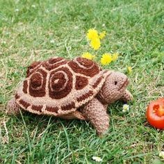 Tortoise knitting pattern - easy knitted toy patterns by Debi Birkin www.debibirkin.com