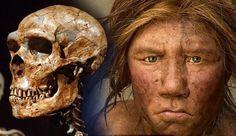 Hibrido Neandertal y Homo sapiens  #hominidos #Historiaurrea #prehistoria