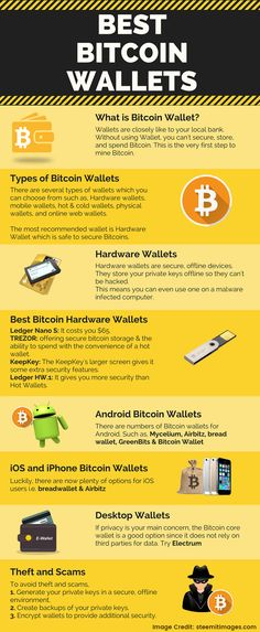 how to put cryptocurrency in a wallet