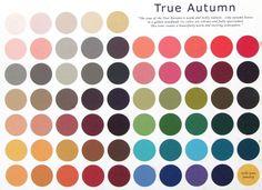 Warm Autumn skin tone colour palette