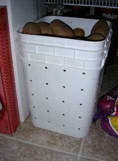 reuse a tidy cats bucket Reuse Plastic Containers, Plastic Buckets, Plastic Laundry Basket, Decorate Plastic Bins, Recycling Containers, Tidy Cat Litter, Tidy Cats, Potato Bin, How To Store Potatoes