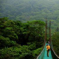 Costa Rica Suspension Bridge Tours