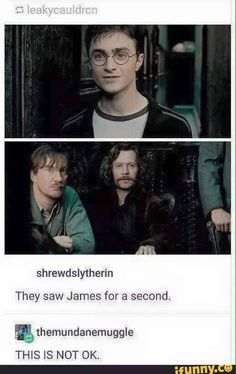 Thats not ok Sirius and Remus seeing Harry thinking it James