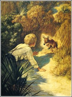 """N.C. Wyeth, from """"The Yearling,"""" by Marjorie Kinnan Rawlings; Jody finds the fawn."""