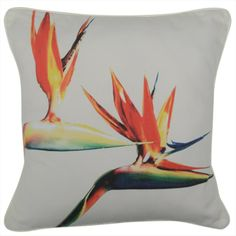 CUSHI   Strelitzias Cushion #pillow #cushion #homedecor Cushion Pillow, Cushions, Pillows, Tapestry, Living Room, Interior Design, Amazing, Outdoor Decor, Home Decor