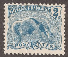 "French Guiana 1905-28 2c blue ""Great Anteater"" Part of the first pictorial issue"