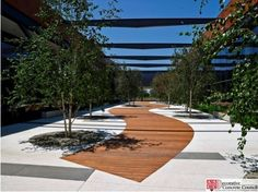 Decorative Concrete Council award winner - Trademark Concrete Systems installed this black and white concrete plaza using select white sands, cement and aggregates at The Reserve