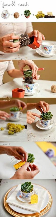 Table center piece idea • Spring Wedding