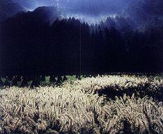 フォトコンテスト:フォトコン写真ギャラリー 2004年入賞作品|写真現像・フォトブック・カメラ販売-キタムラグループ-