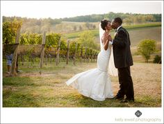 Bride and Groom sunset portraits among the grape vines during the Berry Much In Love wedding style shoot at Stone Tower Winery in Leesburg, Virginia