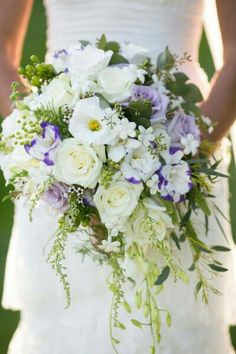 Cascading Wedding Bouquet Showcasing: White Roses, Ivory Roses, White Stephanotis, White Lisianthus, Purple/White Lisianthus, Lavender Roses, Green China Berry, Green Hypericum Berries & Other Greenery/Foliage
