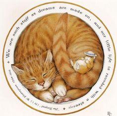 allpix.com / кошка калачиком рисунок