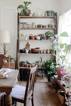 eclectic mix of rustic modern, vintage, natural pieces & lot's of live greens, translates to a very inviting space...