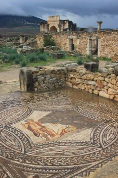 🌿 Volubilis Roman city of Morocco ( Ancient Ruins, Ancient Rome, Ancient Greece, Ancient Art, Ancient History, Places Around The World, Around The Worlds, Pompeii And Herculaneum, Beautiful Ruins