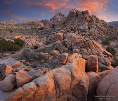 Kingdom of Rock at Joshua Tree by Steve Sieren Photography, via Flickr
