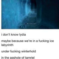 """In the ice labyrinth under Winterhold in the asshole of Tamriel and Lydia asks """"Why is it always so cold?"""""""