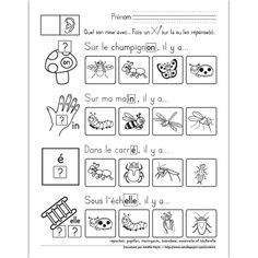 Amelie Pepin, Maternelle Grande Section, French Immersion, Phrases, Language Arts, Teaching, School, Insects, Honey