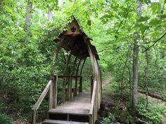 10 Best Upper Cumberland Plateau Ideas Cumberland Plateau Cumberland State Parks