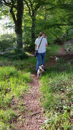 Dog Walking, Walks, Couple Photos, Dogs, Nature, Couple Shots, Couple Pics, Pet Dogs, Couple Photography