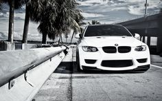 Cool Car Wallpapers - BMW M3 Under Palm Trees. Download This Pictures Of Cars…