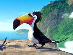 Rafael the Toucan - Google Search