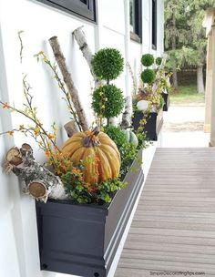 Fall Pumpkins and Branches Window Box Display Porch Decorating, Decorating Tips, Front Door Porch, Front Doors, Christmas Decorations, Table Decorations, Outdoor Decorations, Fall Pumpkins, Fall Crafts