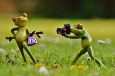 Learning photography has never been more popular than it is now. This is due to the advent of digital photography and the present easy accessibility