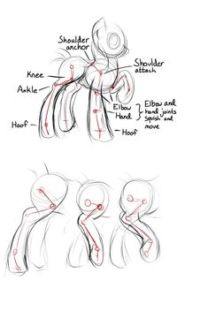 Tutorial: pony legs and joints by viwrastupr.deviantart.com on @DeviantArt