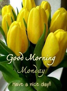 Good Afternoon Quotes, Good Morning Funny, Good Morning Greetings, Good Morning Quotes, Monday Blessings, Morning Blessings, Hello Monday, Happy Monday, Happy Diwali Pictures