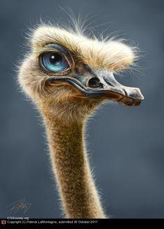 Ostrich Totem by Patrick LaMontagne   2D   CGSociety