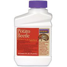 Colorado Potato Beetle Beater- One of the best and safest biological controls for the tough Colorado potato beetle. This product works at the small larval stage of the beetle. Apply when larvae are first observed or about 1/4 inch long. Concentrate mixes readily with water and is very effective in controling this pest on potatoes, tomatoes and eggplant. Also controls many other insect pests that affect fruits, fruit trees, nut trees and other vegetables. Odorless and leaves no oily residue.
