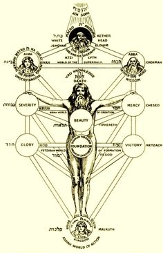"""Tree of Life is considered to be the microcosm of the whole spiritual universe by the Kabbalists, thus representing the human body, called """"Adam Kadmon."""" It emphasizes the genitalia of a human body as the source of energy and divine connection, explaining part the sexual obsessions of Kabbalah. -- Original Title:  """"adam kadmon"""""""