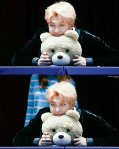 2 cute bears