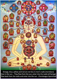 """Luminous beings are we... Not this crude matter. ~Yoda    """"Orange, blue, yellow and red are not less in men's nadis (meridians) than in the sun... They flow from the sun, enter into the nadis (of beings) flow back from the nadis and enter into the sun."""" - Chandaogya Upanishad"""