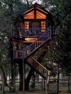 a treehouse for adults