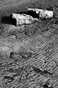 shoreline 10