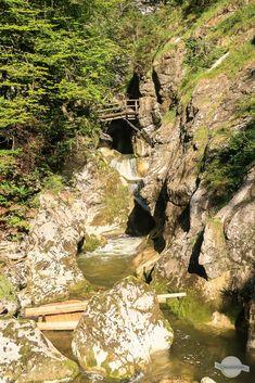 Die Nothklamm in den Steirischen Eisenwurzen im Gesäuse ist eine echte Geo-Region! Hier kommt man der Erdgeschichte hautnah und lernt viel über sehr lang vergangene Zeiten. Auf geologischer Spurensuche in der Steiermark ... Park, Mountains, Ice, Adventure, Nature, Parks