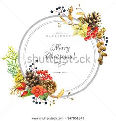 Hydrangeas 库存照片、图片和图画   Shutterstock