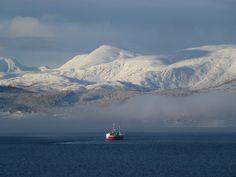 Trondheim Norway, Half Board, Alesund, Us Sailing, Tromso, Arctic Circle, Lofoten, Natural Phenomena, Walking Tour