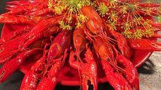 Alla recept i kategorin Kräftskiva | SVT recept Shrimp, Carrots, Mat, Vegetables, Carrot, Vegetable Recipes, Veggies