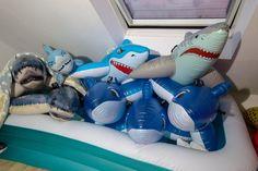 Fresca, Pool Floats, Pool Toys, 22 Years Old, Sharks, Dawn, Birthday Ideas, Dinosaur Stuffed Animal, Cool Stuff