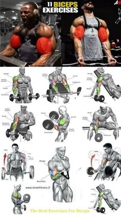 My Biceps & Triceps Workout Routine for Bigger Arms Size Biceps Training, Weight Training Workouts, Fitness Workouts, Yoga Fitness, Fitness Pal, Planet Fitness, Ab Workouts, Muscle Fitness, Fitness Tracker