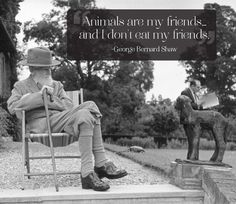 "George Bernard Shaw July 1856 – 2 November : ""Animals are my friends.and I don't eat my friends. George Bernard Shaw, Animal Quotes, Dog Quotes, Quotes And Notes, Great Quotes, Life Pictures, Hug You, Beautiful Dogs, In This World"