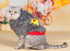 Your cat might not be able to appreciate the unique look of this shaggy cardigan, but its warmth will win him or her over…eventually.