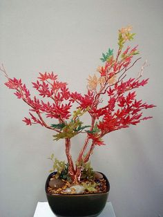 Beaded Japanese Maple - must make one for Grandma's miniature zen tea garden - the new one that can't be killed by Grandpa