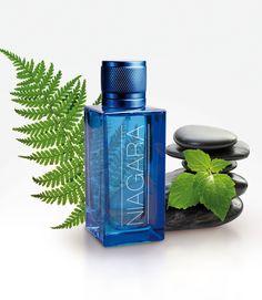 NIAGARA : Bleu profond. Un bleu pur et puissant, aquatique, une cascade d'émotions dans cette création FREDERIC M pour l'homme. Un boisé moderne aux accents épicés et ambrés, qui mêle fraîcheur et force pour des hommes sans concession. #perfumes #fredericm #parfums #mlm #grasse #fragrance #homme #man