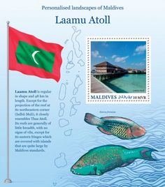 MLD16220b Maldives, Stamps, Pets, Animals, The Maldives, Seals, Animales, Animaux, Postage Stamps
